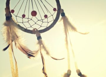 Venus Group Supports Native American Heritage Month